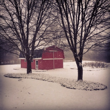 View of our barn and lake during a Christmas Eve snowstorm (2013).