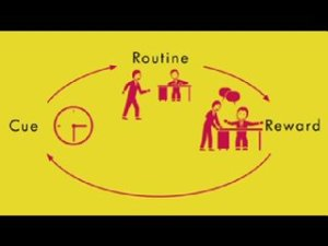 The habit loop, from The Power of Habit