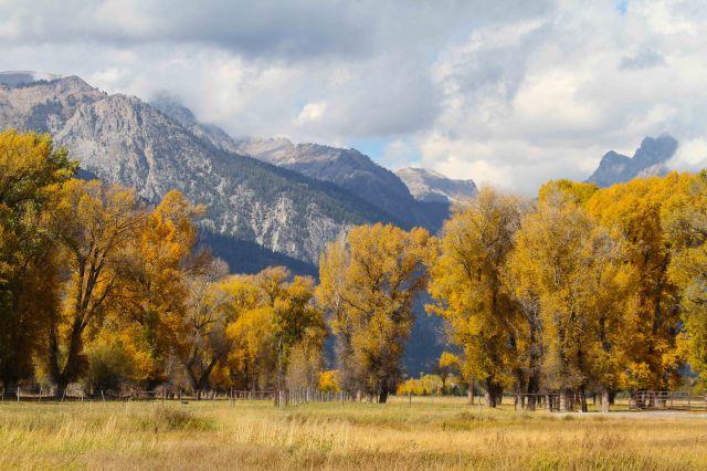 Mountains and fall foliage around Jackson, Wyoming,